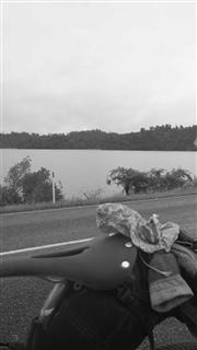 Photo of Tour Aotearoa 2016: Rider Hamish Dalglish